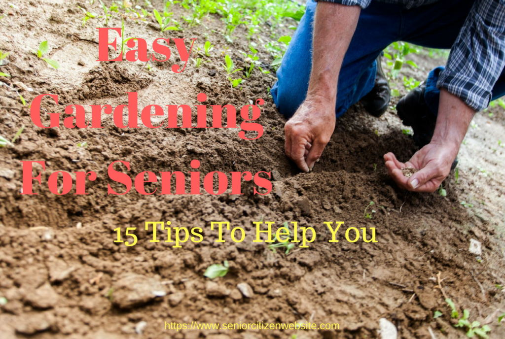 15 easy gardening tips for seniors